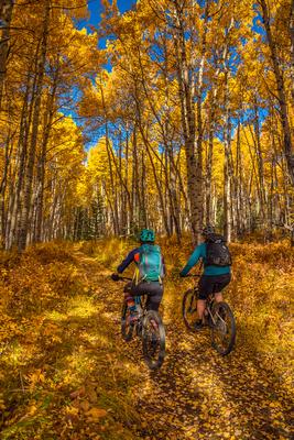 Autumn Biking Adventures